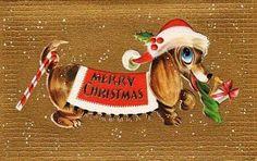 View from the Birdhouse: Dear Abby - Vintage Christmas Dachshunds Vintage Dachshund, Vintage Dog, Dachshund Love, Daschund, Christmas Past, Christmas Greetings, Birthday Greetings, Birthday Cards, Happy Birthday