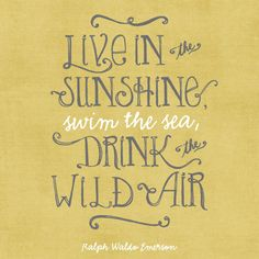 driftwiththewind:  Live In The Sunshine Swim The Sea Drink The Wild Air