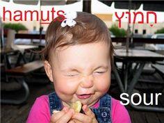 sour  (verb)                   הֶחְמִיץ