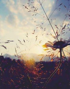 Eskiden vefâ vardı, veda nedir bilmezdik.  Hatırlamak, arayıp sormak, gönül almak vardı.  Birde gönülden sevmek …