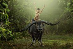 Beautiful-Nature-Wallpaper-Of-Nature-cool-cute-nature-animal-wallpaper-by-md.sopon1_.jpg (1950×1300)