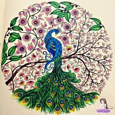 Peacock Secret Garden. Pavāo Jardim Secreto. Johanna Basford
