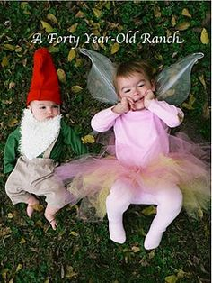 fairy and gnome!