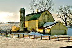 {pretty yellow barn}