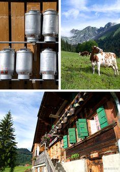 Zu Gast in der Schweiz