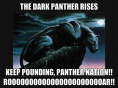 Carolina Panthers                                                                                                                                                                                 More