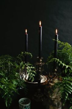 However, to make the setting more welcoming and pleasing, you need some Halloween table decoration inspirations. Check out these 79 stunning Halloween table setting ideas below to inspire you. Table Halloween, Halloween Dinner, Halloween House, Holidays Halloween, Halloween Weddings, Classy Halloween Wedding, Halloween Table Settings, Victorian Halloween, Halloween Entertaining