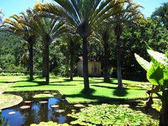 Fazenda Vargem Grande - Areias, SP - Jardim Burle Marx