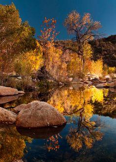 Sabino Canyon,