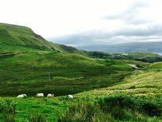Trip to Isle of Mull