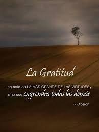 vivir para volar frases - BúsquedadeGoogle Intelligent Words, Make You Cry, Gratitude, Thankful, Quotes, Grande, Sweet, Google, Ideas