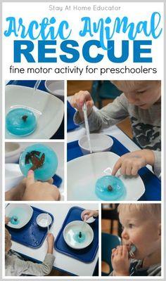 Arctic Animal Fine Motor Activities for Preschoolers