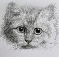 pointillism. dotted style ink pen cat portrait