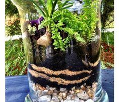 How to make a terrarium !