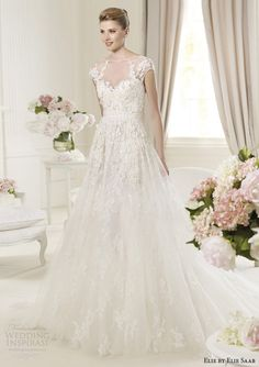 elie by elie saab for pronovias 2014 bridal monceau cap sleeve wedding dress illusion bodice