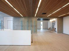 Falso techo imitación madera DINESEN CEILING by Dinesen