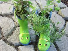 @Stephanie Chisholm... don't throw out your old rubber boots with the holes in them - recyle them into planters! cute eh?