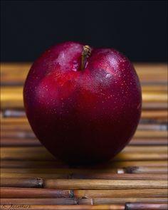 plum fellow
