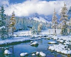 First snow!  Winter Paradise, a 1000 piece jigsaw puzzle by Springbok Puzzles.