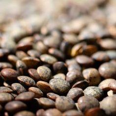 Puy Linsen: Rezepte und Tipps