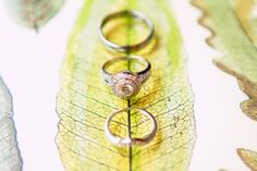 A #striking, #memorable + #beautiful #ringshot of the #weddingbands + #engagementring. ::Garland + Jordy's gorgeous outdoor lake wedding at the Chatahoochee Country Club in Gainesville, Georgia:: #jewelry #weddingjewelry #gorgeous #weddingphotography #details #closeup #photography #beautiful #leaves