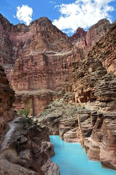 """Grand Canyon: Mouth of Havasu Creek 0213"" by Grand Canyon NPS on Flickr - The confluence of Havasu Creek with the Colorado River (river mile 157) is a popular place for boaters to stop and admire the striking blue-green water of Havasu Creek.  The turquoise color is caused by water with a high mineral content.  At the point where the blue creek meets the turbid Colorado River there often appears a definite break. - NPS photo by Erin Whittaker"