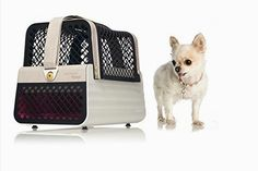 Crash Tested Dog Carry on for Small Dogs        >>> Great deal    http://amzn.to/2bAvvQb
