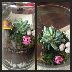 Terrarium making with the kiddos! See more about making these fun little themed guys in my blog! Great fun and learning for kids. Check out the June post http://busyfams.typepad.com/kks-busy-famblog/