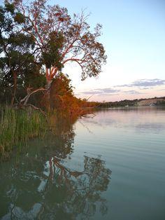 The Murray River, South Australia