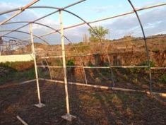 Cómo hacer tu propio invernadero con tubos de PVC – huertaelcampichuelo Gardens, Carp, Build A Greenhouse, Greenhouse Gardening, Pvc Pipes, Chicken Coops, Renewable Energy, Green Houses, Vivarium