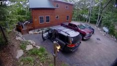Black bear opens car doors, brings 4 cubs inside in Adirondacks Family Show, Abc News, Black Bear, Science Nature, Cubs, News Breaking, Bring It On, News Latest, Wild Animals