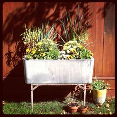 Concrete Laundry Sink Planter My Garden Projects Trough Planters Outdoor Landscaping Bloom