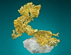 SCOTT WEBsite----Click on ad at www.goldshopper.org for free gold or silver! #gold bullion #Bullion #Gold #Silver #Platinum #Palladium #Bullion #GoldCoins #Precious #PreciousMetal #gold nugget #gold nuggets