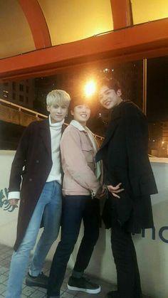 ⤴× kthpgs × I kpop I SF9 - TAEYANG, CHANI & ROWOON