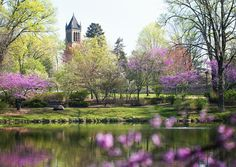 Iowa State University, Lake Laverne