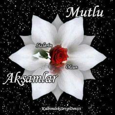 Islamic Art, Hanukkah, Wreaths, Decor, Decoration, Door Wreaths, Deco Mesh Wreaths, Decorating, Floral Arrangements