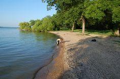 Avalon Park- Google Search