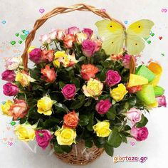 You searched for label/ΕΙΚΟΝΕΣ ΧΩΡΙΣ ΛΟΓΙΑ - Giortazo. Happy Birthday Flower, Gifs, Beautiful Flowers, Floral Wreath, Photos, Animation, Wreaths, Sunshine, Image