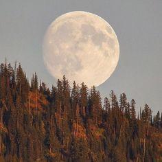 Glacier National Park, Montana, USA. Photo by: @jacobwfrank Explore. Share. Inspire: #earthfocus #nature #earthporn #awesome
