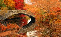 fall colors and old bridge