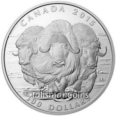Canada 2015 Wildlife in Motion $100 Commemorative #6 - Arctic Muskox Charging Across the Frozen Tundra Musk Ox Family Pure Silver Matte Proof L07 L08