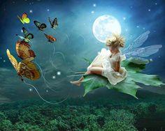 Sanando el Alma: Luna Nueva en Virgo