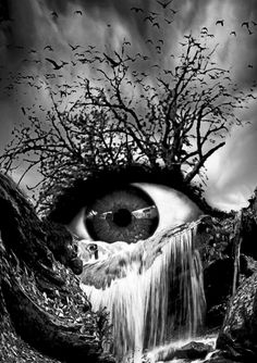 Cascade Crying Eye grayscale Art Print by Marian Voicu. All prints are professionally printed, packaged, and shipped within 3 - 4 business days. Choose from multiple sizes and hundreds of frame and mat options. Pencil Art Drawings, Dark Art Drawings, Art Drawings Sketches, Cool Eye Drawings, Natur Tattoo Arm, Crying Eyes, Eyes Artwork, Dark Artwork, Bild Tattoos