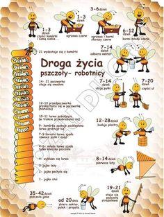 Honey Packaging, School Clubs, Bee Keeping, Montessori, Homeschool, Teaching, Education, Health, Crafts