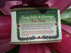 Green Virgin Products - Soap Nut