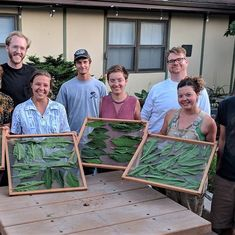 From our Summer 2019 Permaculture Design Course Comfrey Tea, Permaculture Design Course, Graduation, Projects, Summer, Instagram, Log Projects, Blue Prints, Summer Time