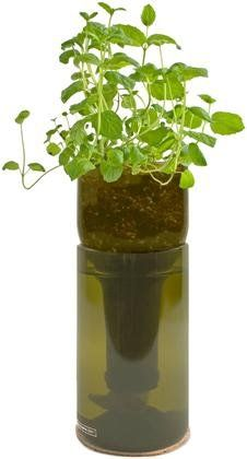 Potting Shed Creations Grow Bottle - Mint - Free Shipping