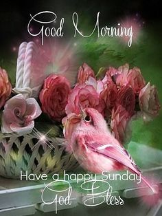 Good Morning, Have A Happy Sunday, God Bless good morning sunday sunday quotes sunday blessings good morning sunday quotes sunday images