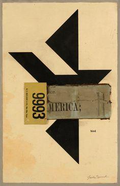 Bird America - Julie Speed