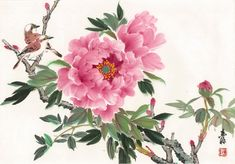 Advanced – Maurice Lin's Chinese Painting College